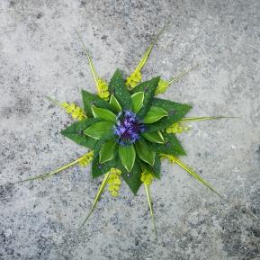 Centuria Blue
